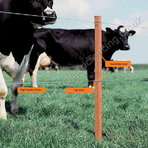 ELECTRIC HORSE FENCING SUPPLIES | ELECTRIC FENCE