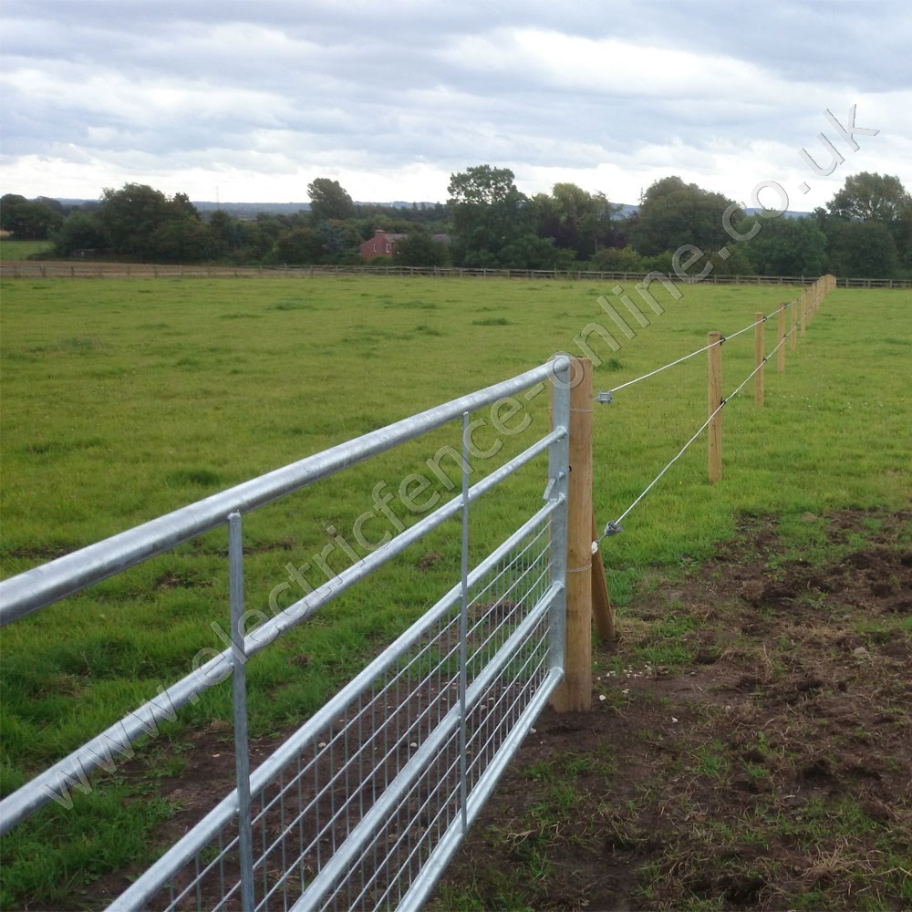Equiline Horse Fence Line
