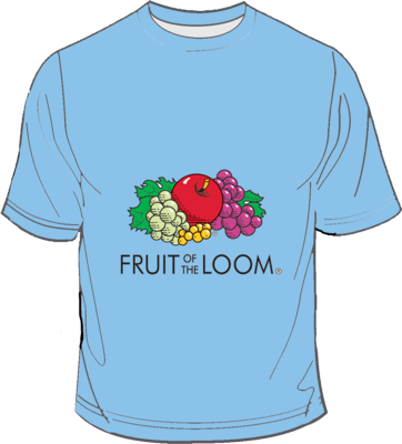 Fruit of the Loom Screen Stars Azure Blue