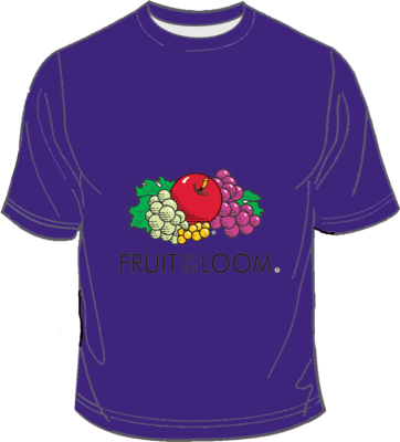 Fruit of the Loom Screen Stars Purple