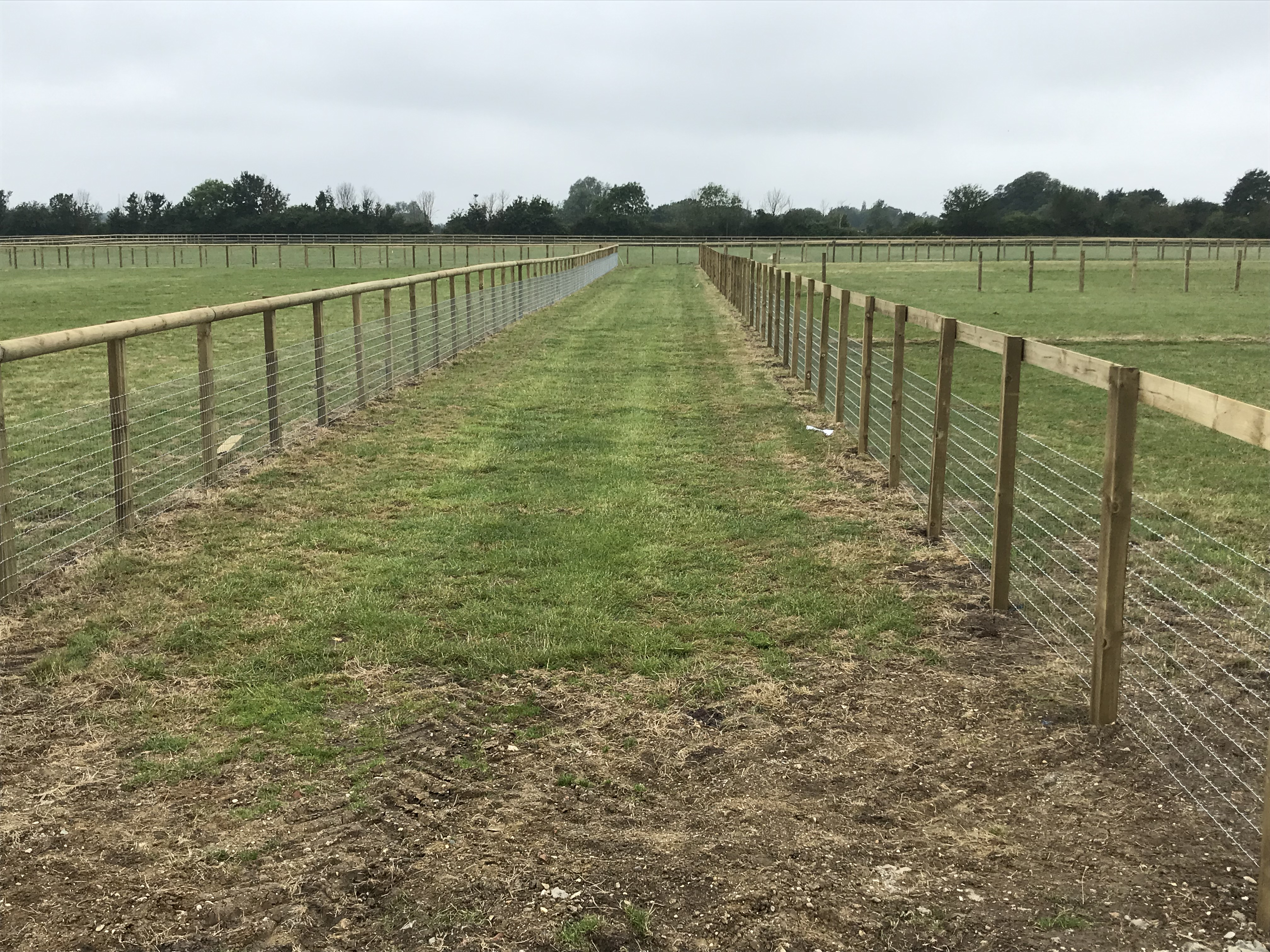 Ultimate Horse Fence Farm And Country Fencing