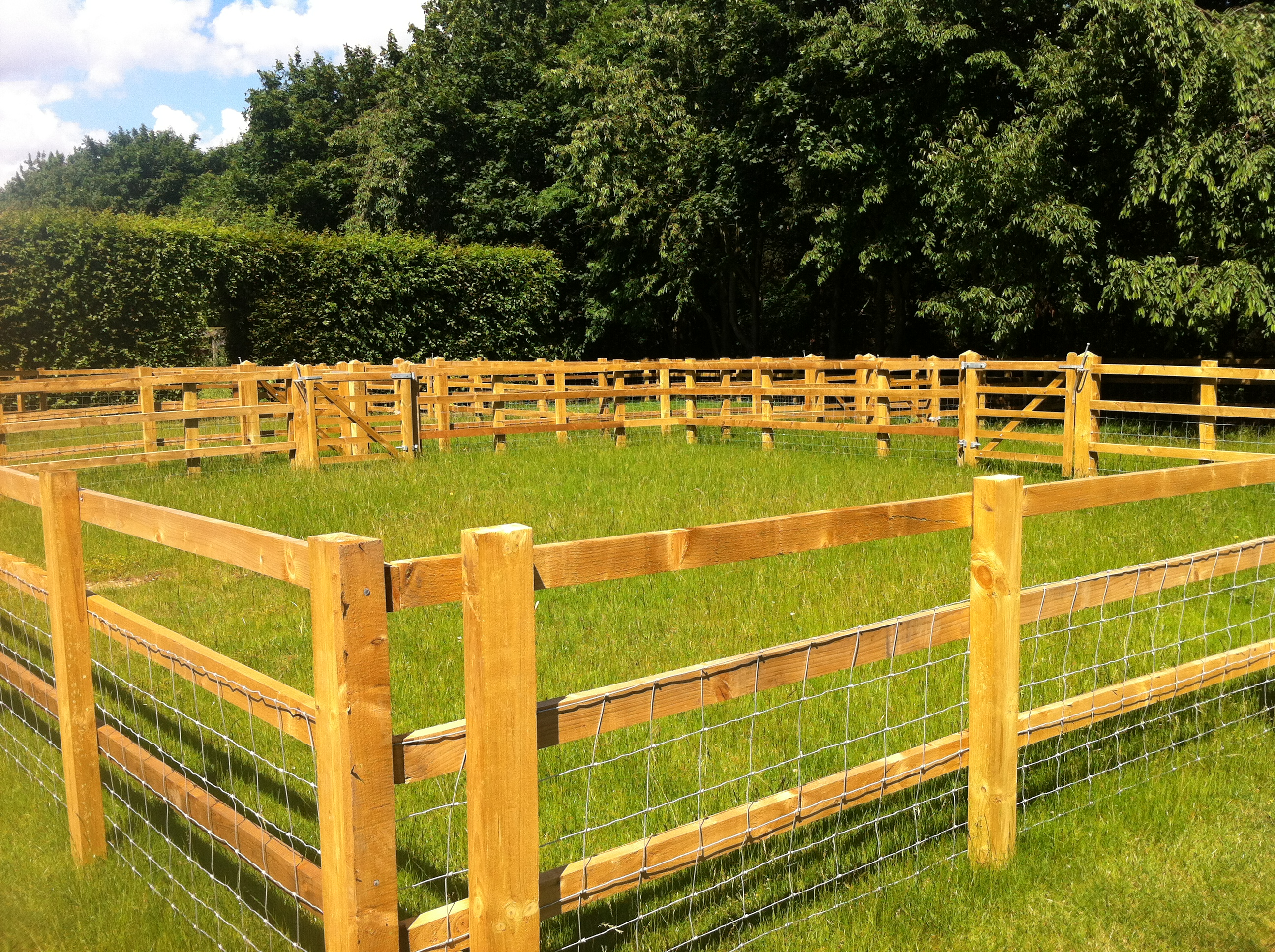 Post and Rail Fencing Enclosure