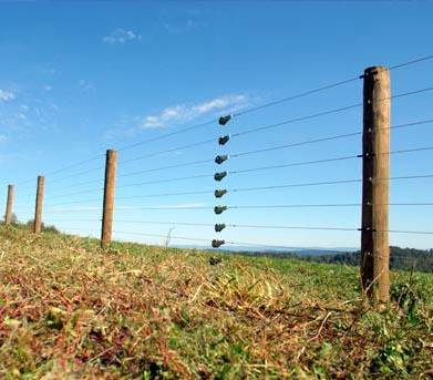 Electric Fence 5