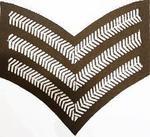 Service Dress SGT Stripes