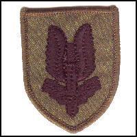 Combat Subdued Special Air Service Berret Badge