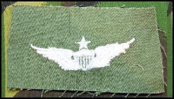 USAF Cloth Sew on Badge