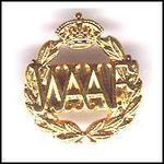 Gilt Metal WAAF Broach